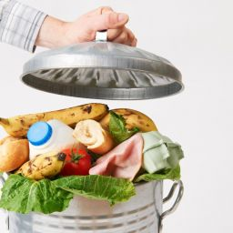 Retailer's Eco Strategy for Food Waste and Plastic Usage